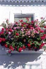 Balcón típico de Abla
